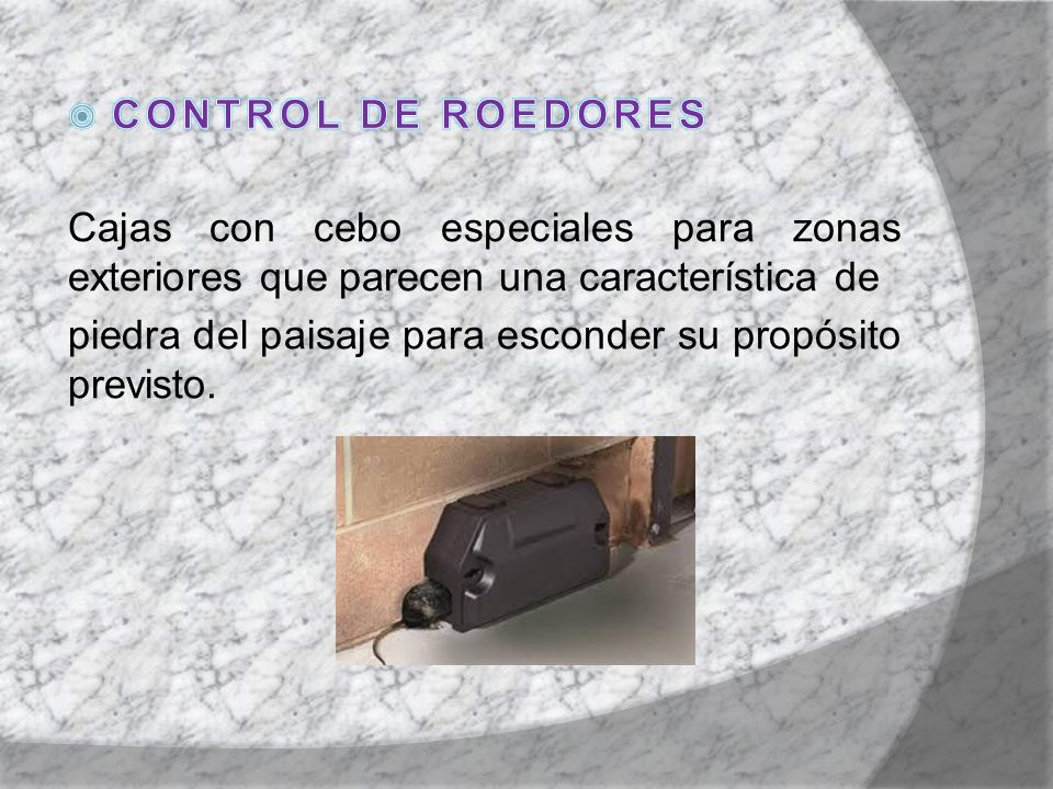 CONTROL DE ROEDORES Cajas con cebo especiales para zonas exteriores que parecen una característica de.