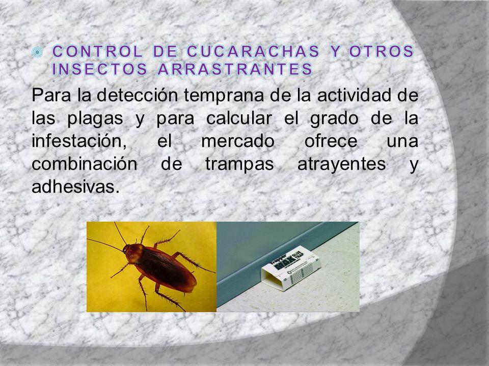 CONTROL DE CUCARACHAS Y OTROS INSECTOS ARRASTRANTES