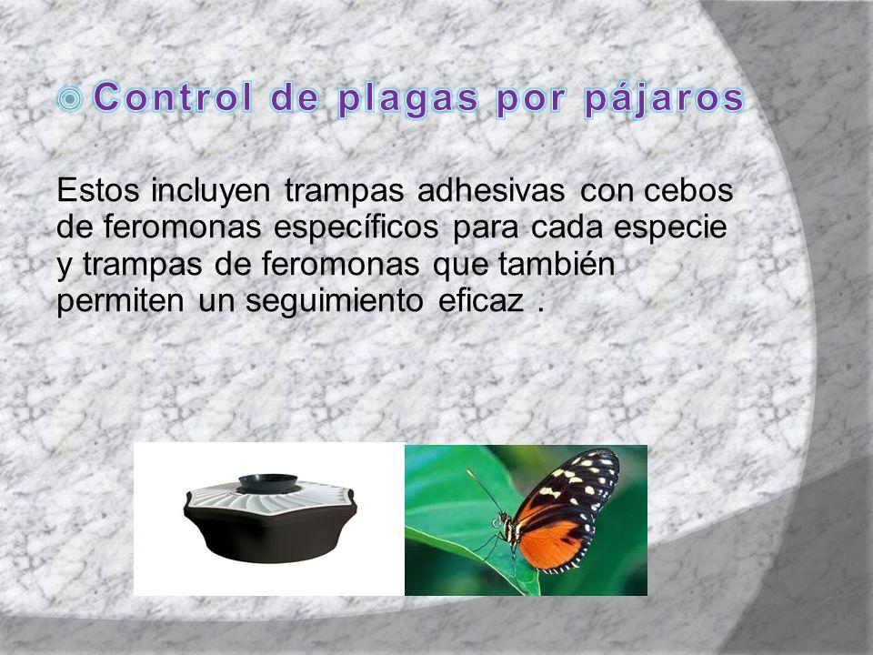 Control de plagas por pájaros