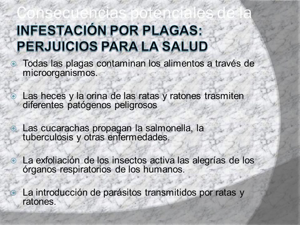 Consecuencias potenciales de la infestación por plagas: perjuicios para la salud