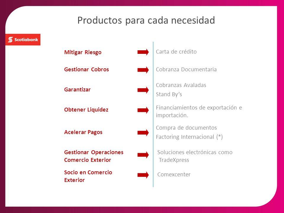 Productos para cada necesidad