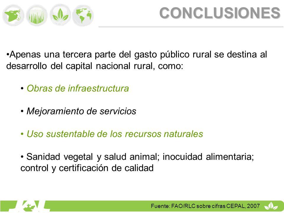 CONCLUSIONES Apenas una tercera parte del gasto público rural se destina al desarrollo del capital nacional rural, como:
