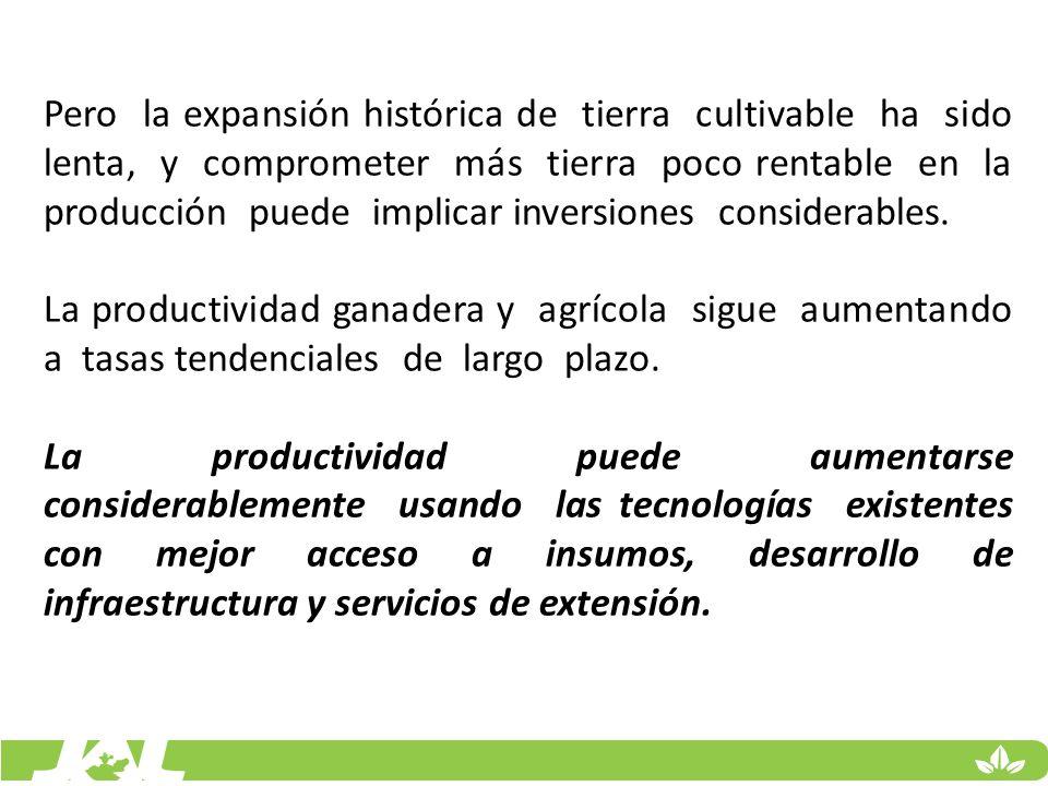 Pero la expansión histórica de tierra cultivable ha sido lenta, y comprometer más tierra poco rentable en la producción puede implicar inversiones considerables.