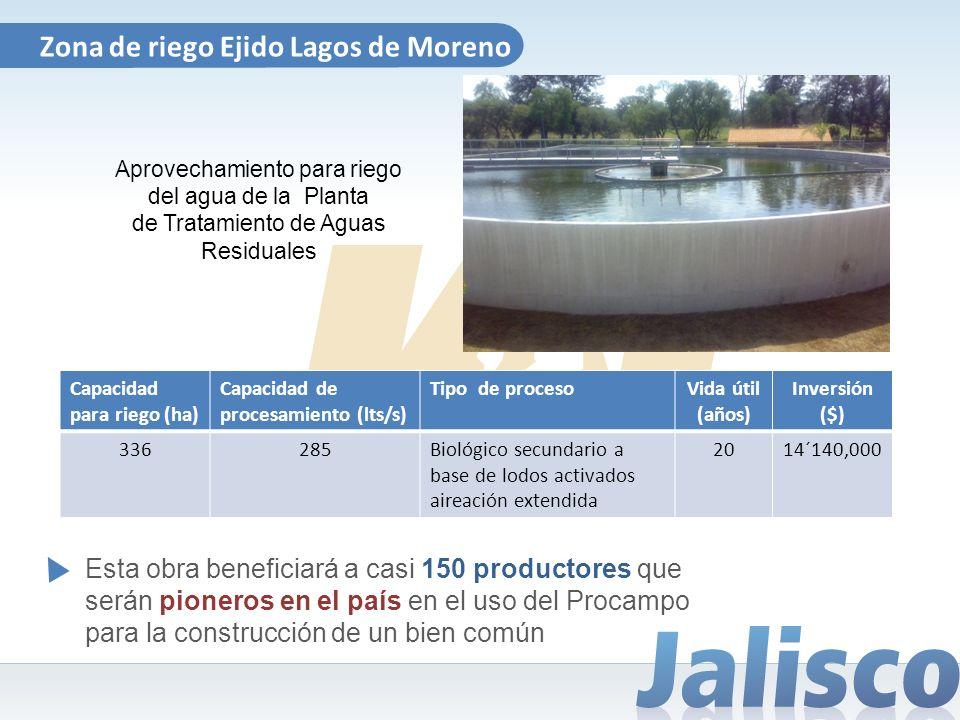 Zona de riego Ejido Lagos de Moreno