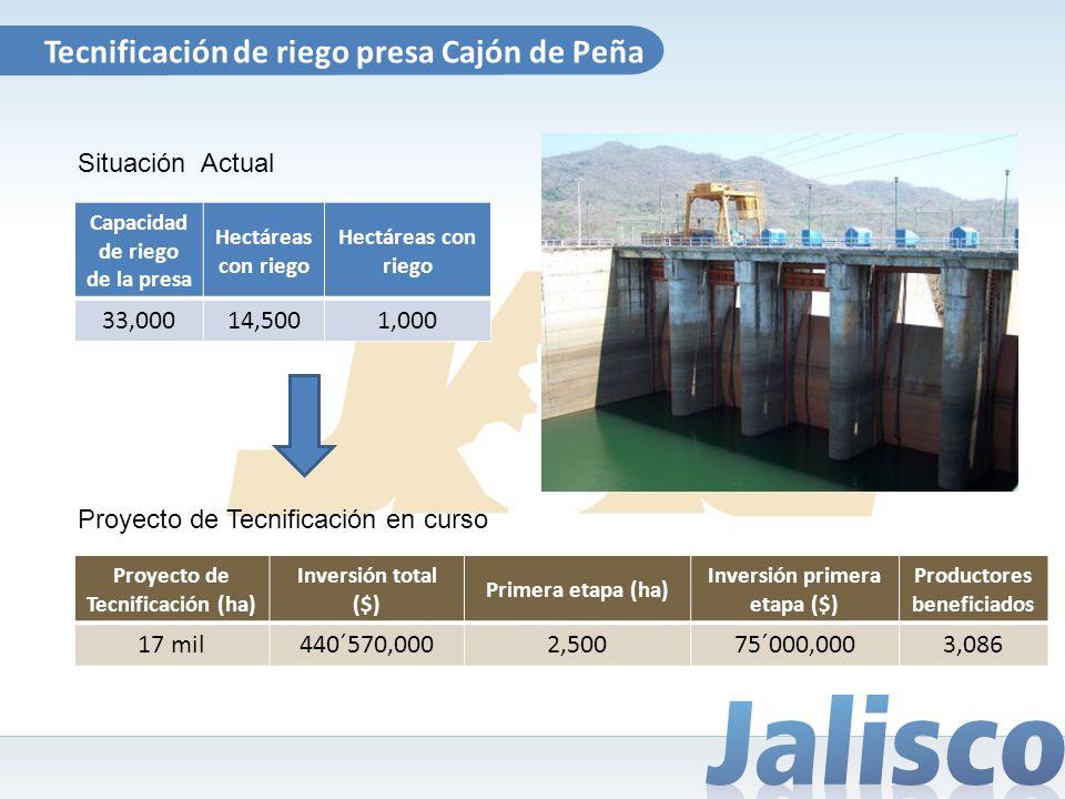 Tecnificación de riego presa Cajón de Peña