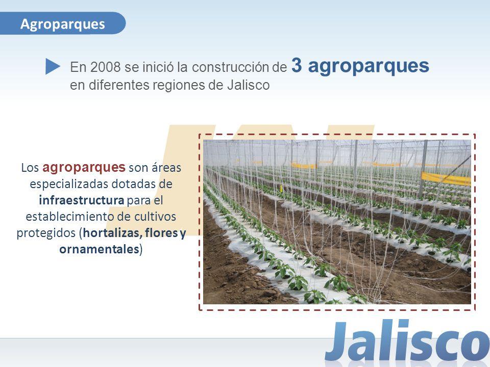 Agroparques En 2008 se inició la construcción de 3 agroparques en diferentes regiones de Jalisco.