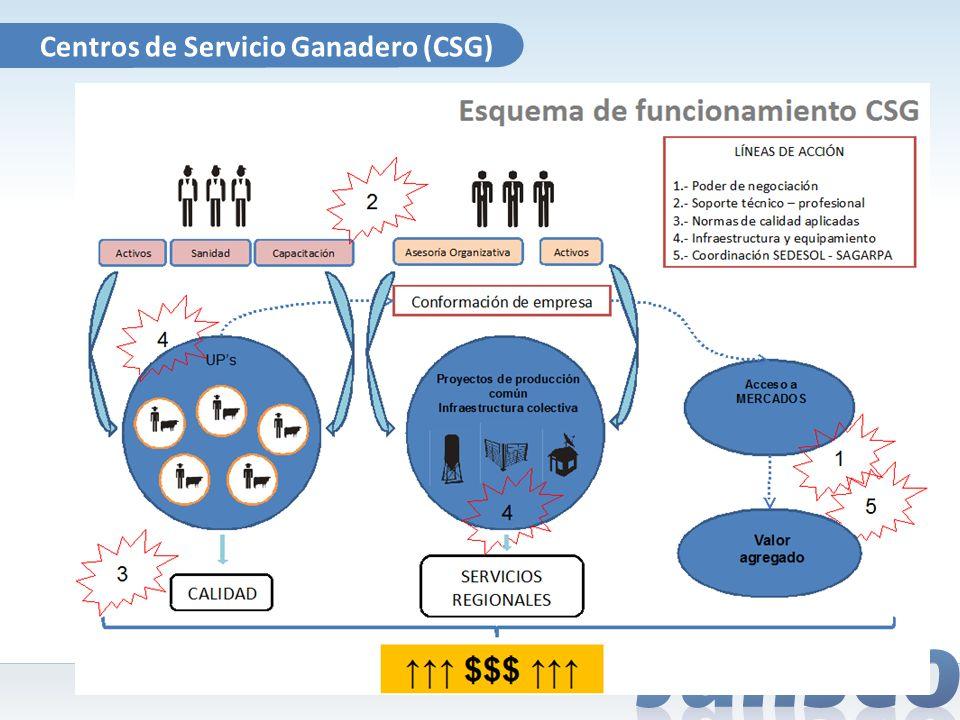 Centros de Servicio Ganadero (CSG)