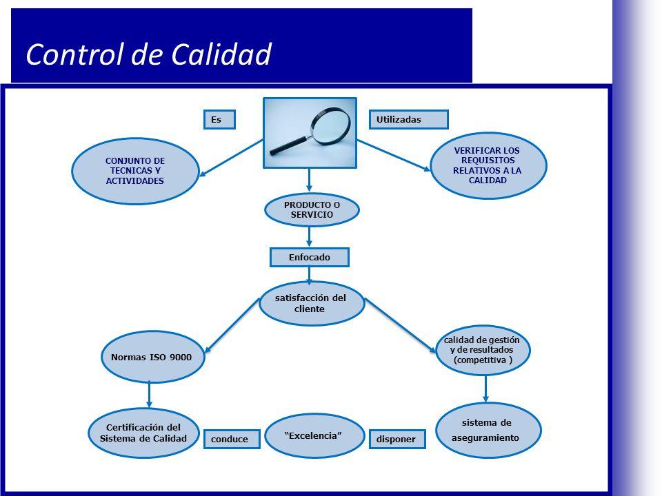 Control de Calidad Es Utilizadas Enfocado satisfacción del cliente