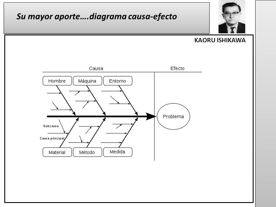 Su mayor aporte….diagrama causa-efecto