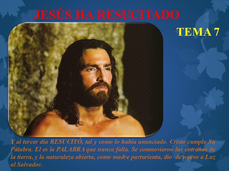 JESÚS HA RESUCITADO TEMA 7