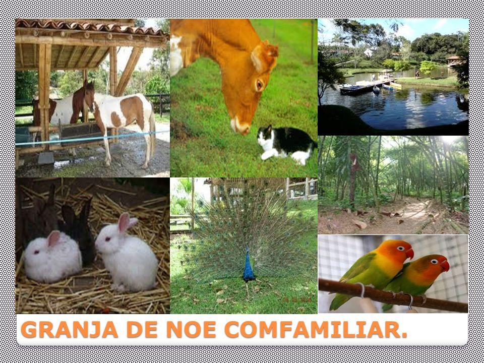 GRANJA DE NOE COMFAMILIAR.