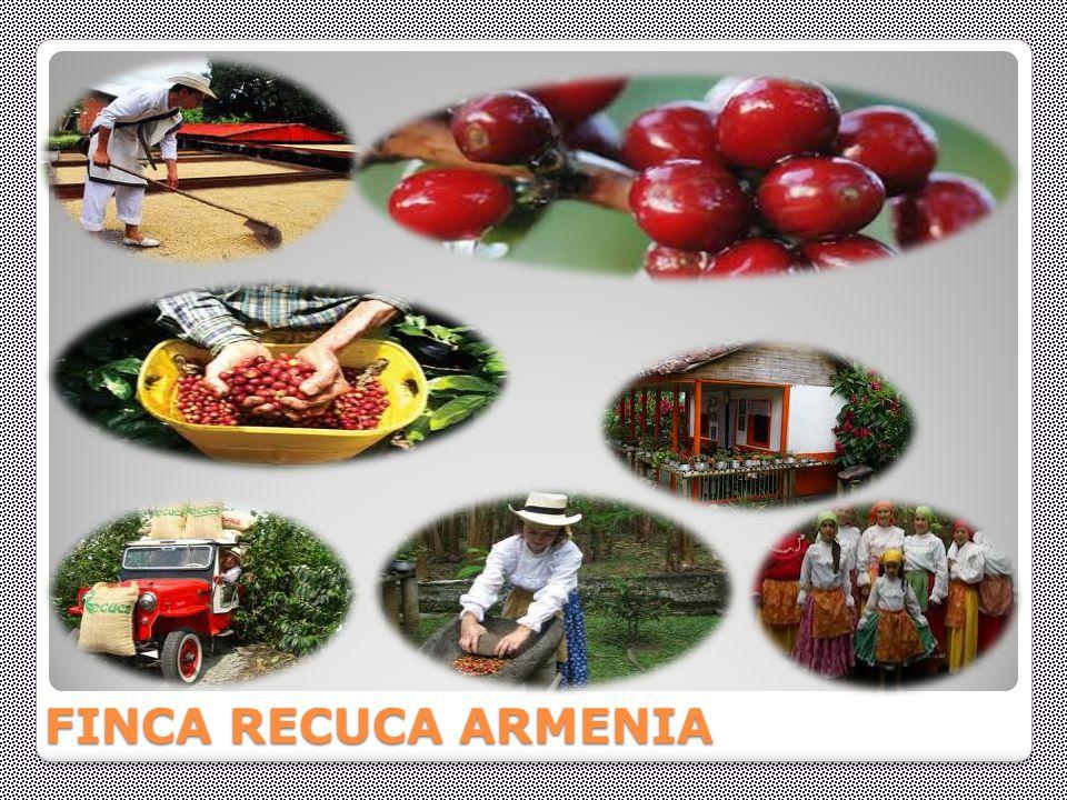 FINCA RECUCA ARMENIA