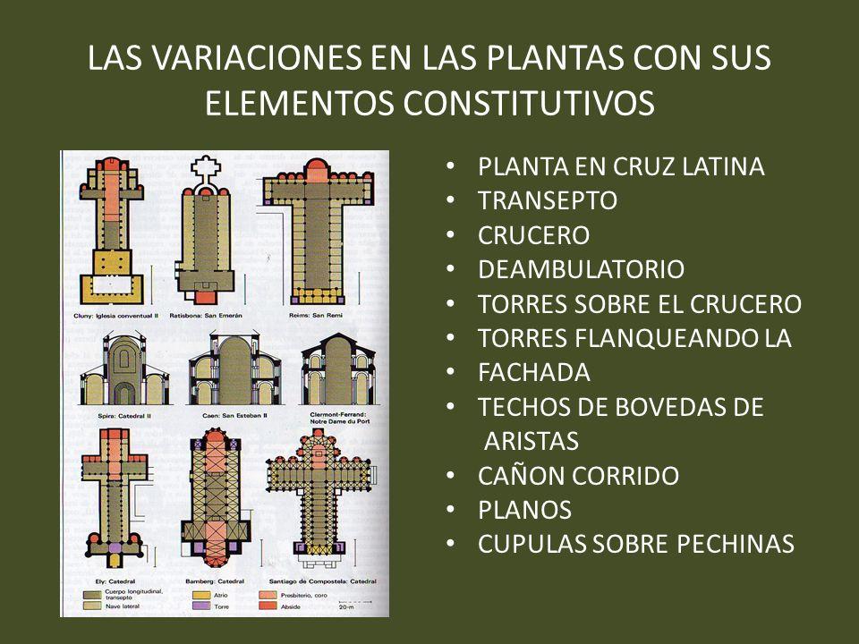 LAS VARIACIONES EN LAS PLANTAS CON SUS ELEMENTOS CONSTITUTIVOS