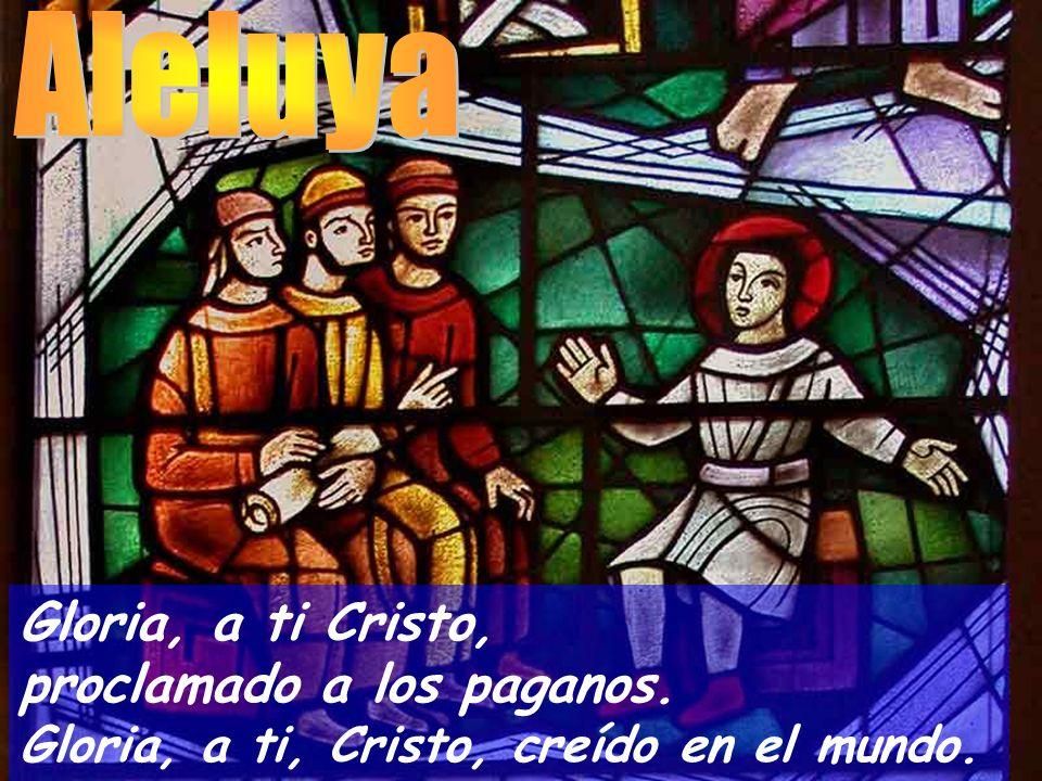 Aleluya Gloria, a ti Cristo, proclamado a los paganos.