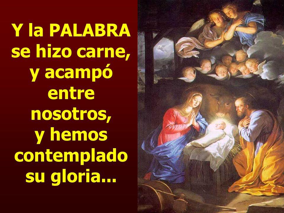 Y la PALABRA se hizo carne, y acampó entre nosotros, y hemos contemplado su gloria...