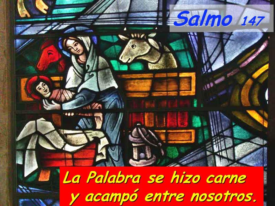 Salmo 147 La Palabra se hizo carne y acampó entre nosotros.