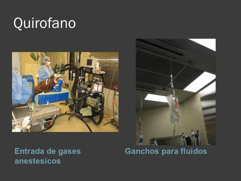 Quirofano Entrada de gases anestesicos Ganchos para fluidos