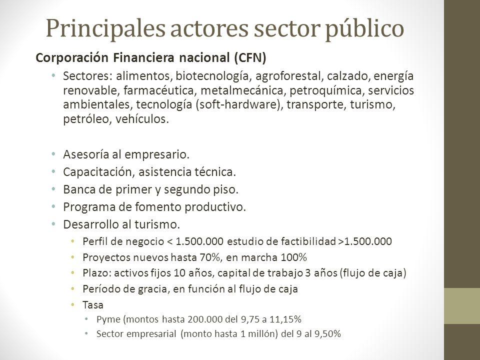 Principales actores sector público