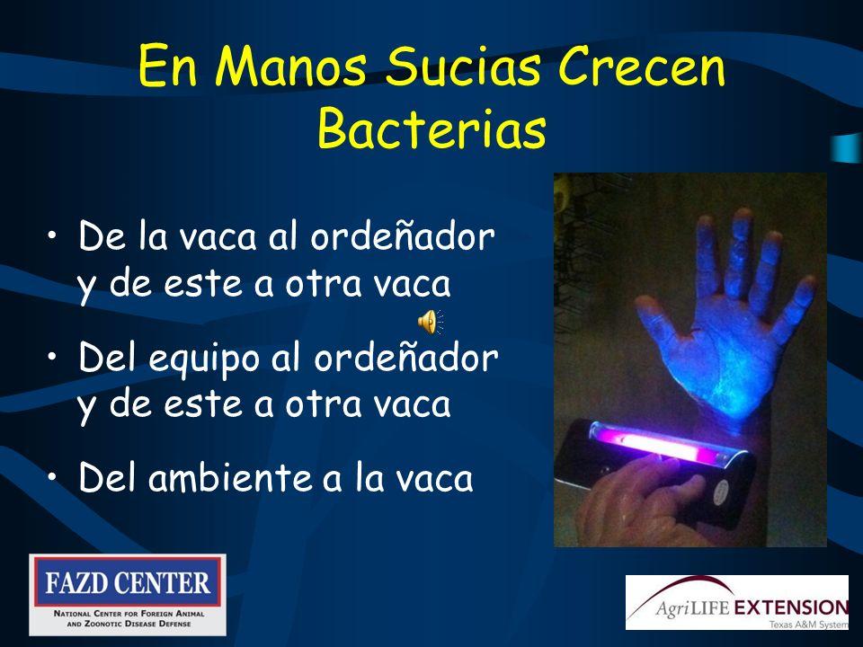 En Manos Sucias Crecen Bacterias