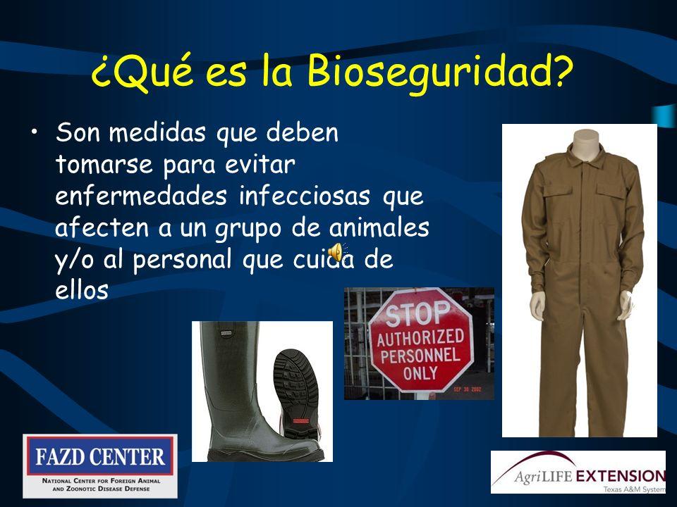 ¿Qué es la Bioseguridad
