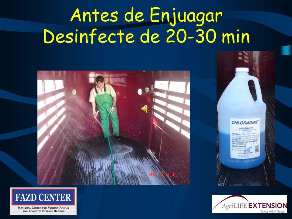 Antes de Enjuagar Desinfecte de 20-30 min