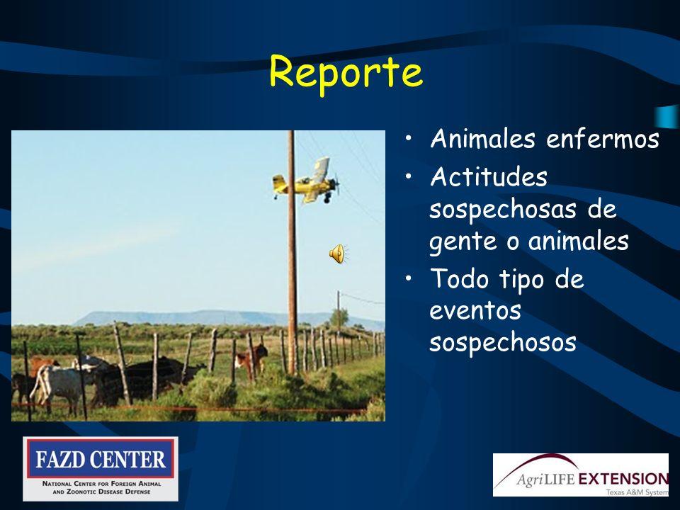 Reporte Animales enfermos Actitudes sospechosas de gente o animales