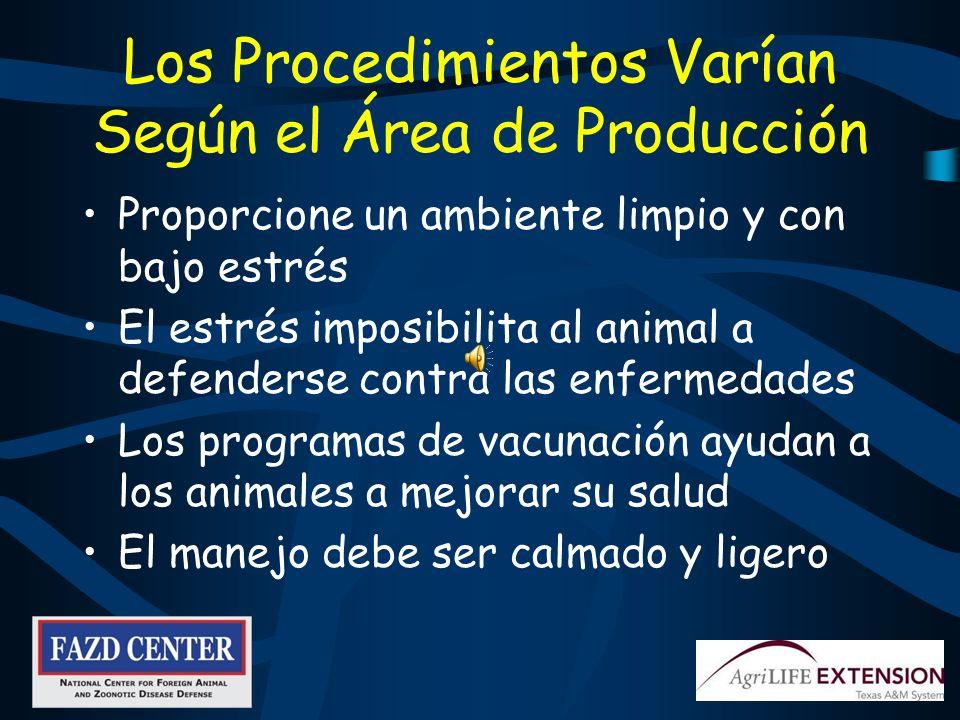 Los Procedimientos Varían Según el Área de Producción
