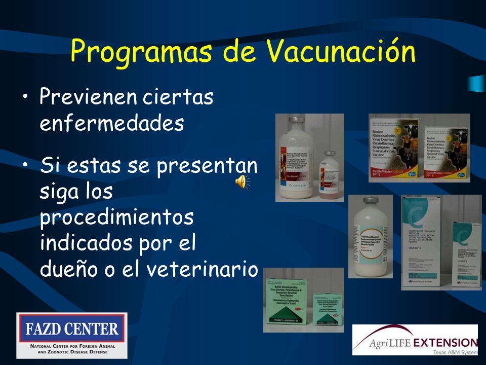 Programas de Vacunación