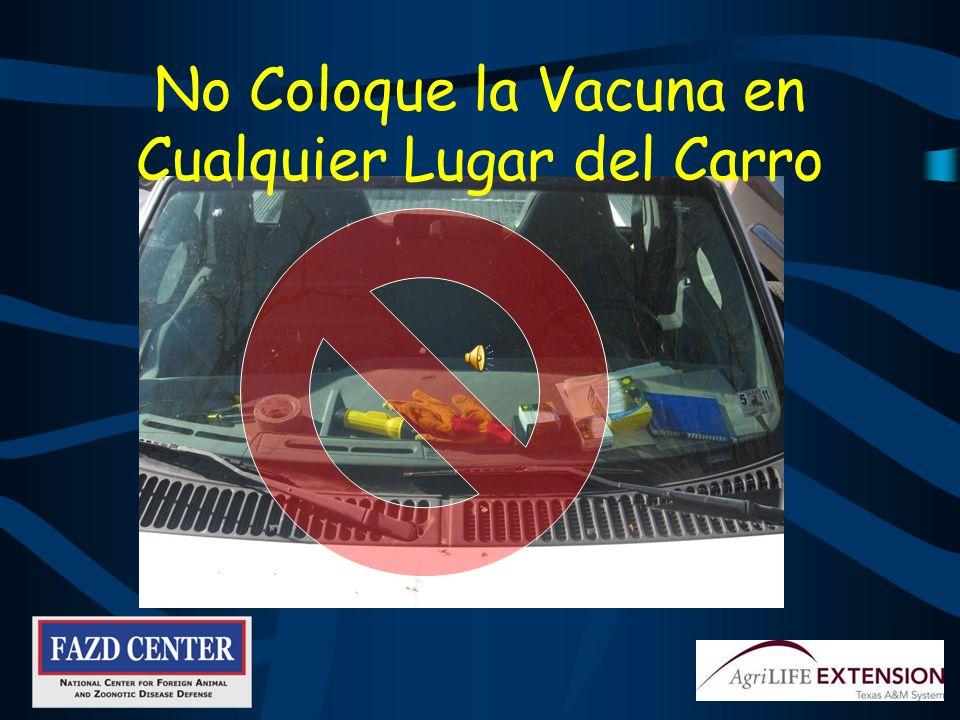 No Coloque la Vacuna en Cualquier Lugar del Carro