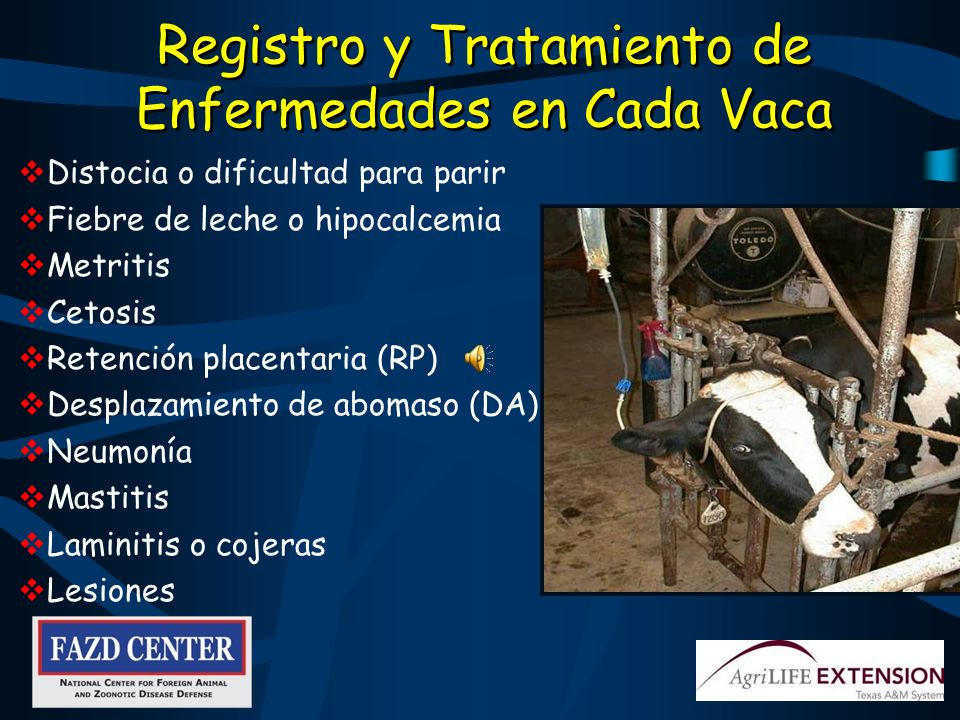 Registro y Tratamiento de Enfermedades en Cada Vaca