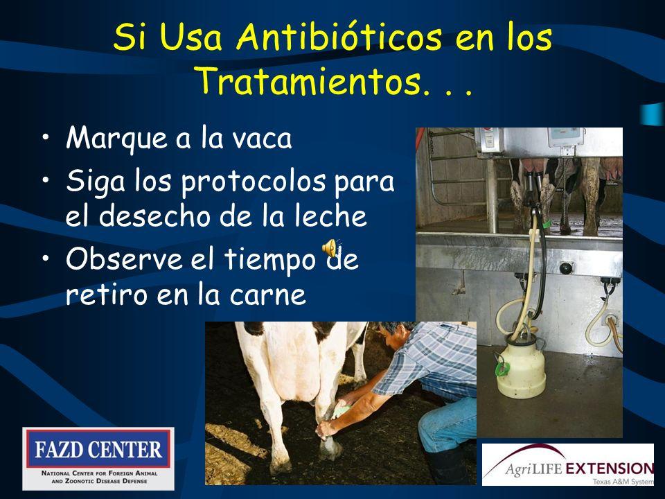 Si Usa Antibióticos en los Tratamientos. . .