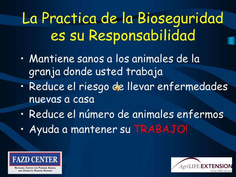 La Practica de la Bioseguridad es su Responsabilidad