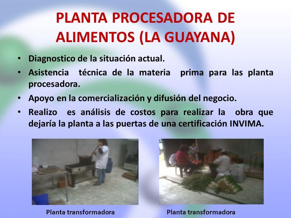 PLANTA PROCESADORA DE ALIMENTOS (LA GUAYANA)