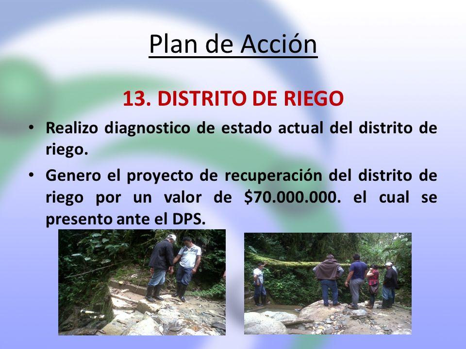 Plan de Acción 13. DISTRITO DE RIEGO