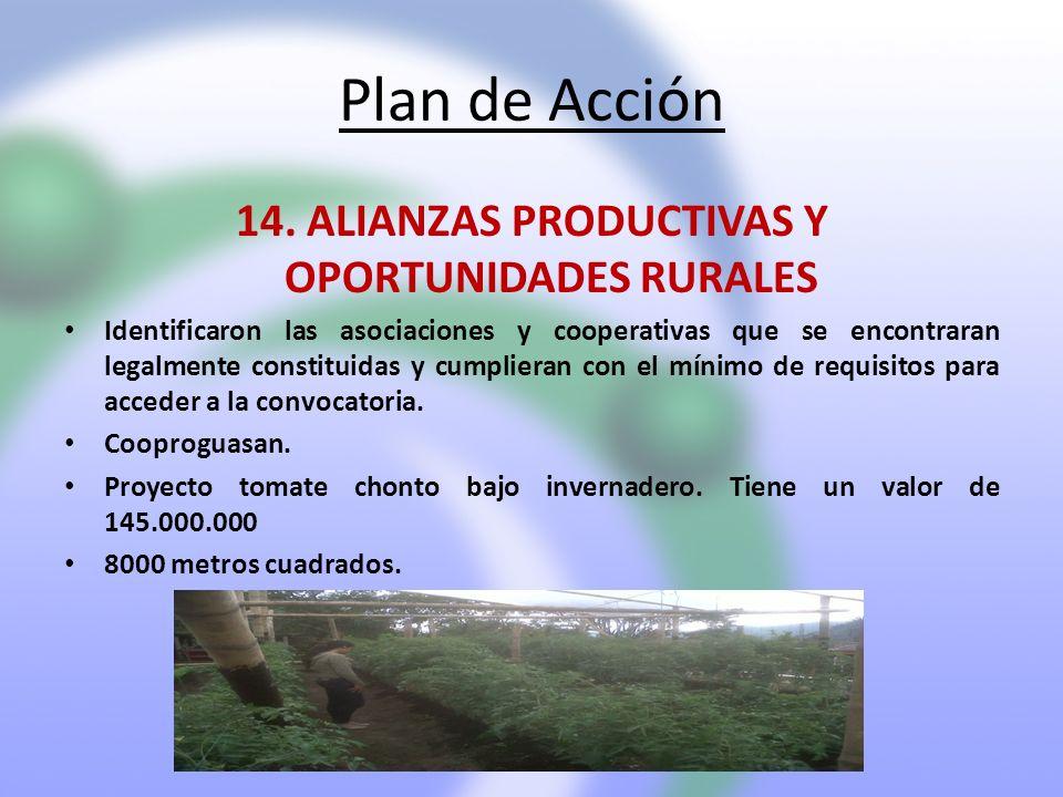 14. ALIANZAS PRODUCTIVAS Y OPORTUNIDADES RURALES