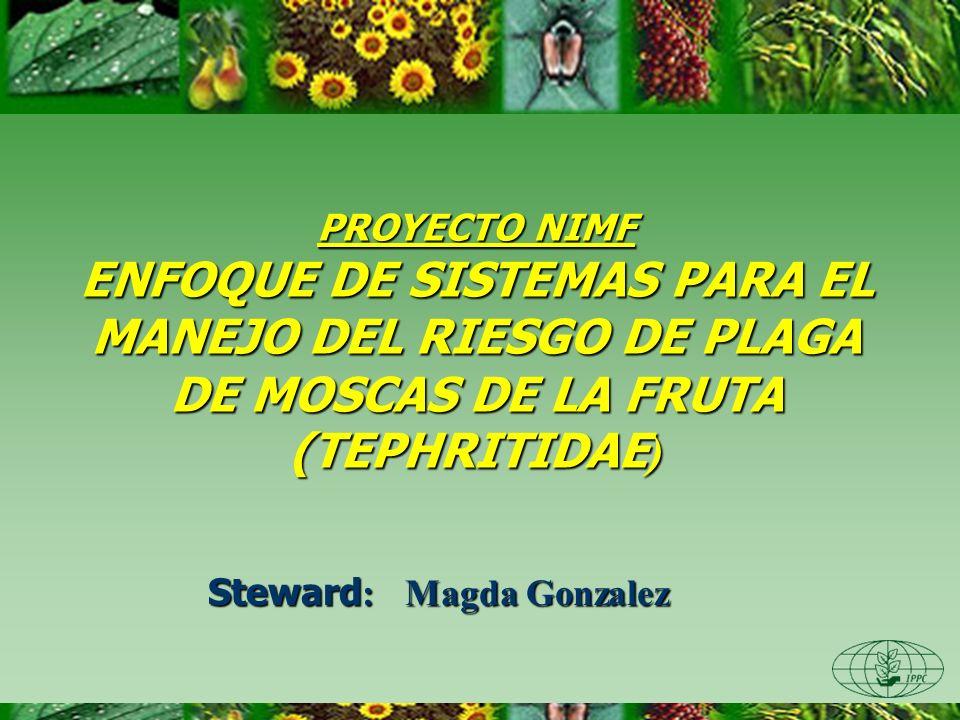 Steward: Magda Gonzalez