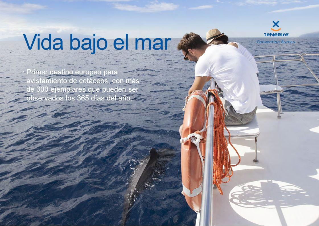 Vida bajo el mar Primer destino europeo para avistamiento de cetáceos, con más de 300 ejemplares que pueden ser observados los 365 días del año.