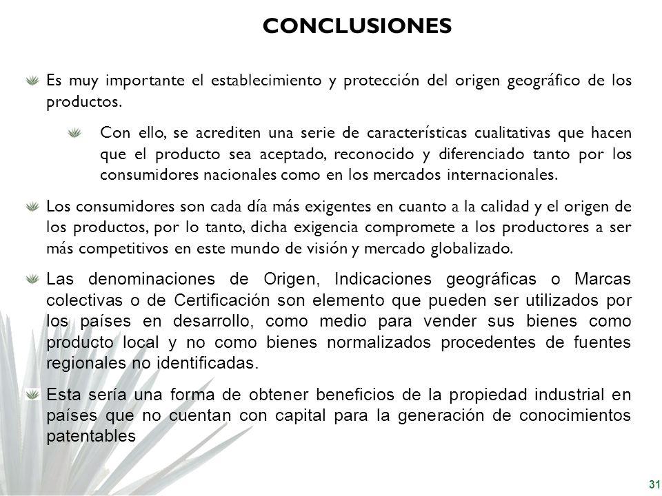 CONCLUSIONES Es muy importante el establecimiento y protección del origen geográfico de los productos.
