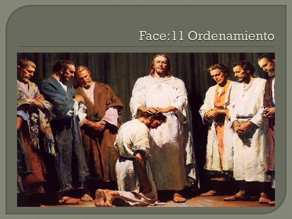 Face:11 Ordenamiento
