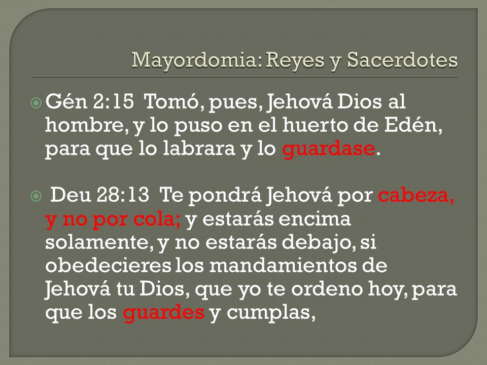 Mayordomia: Reyes y Sacerdotes