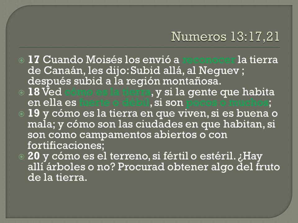 Numeros 13:17,21 17 Cuando Moisés los envió a reconocer la tierra de Canaán, les dijo: Subid allá, al Neguev ; después subid a la región montañosa.