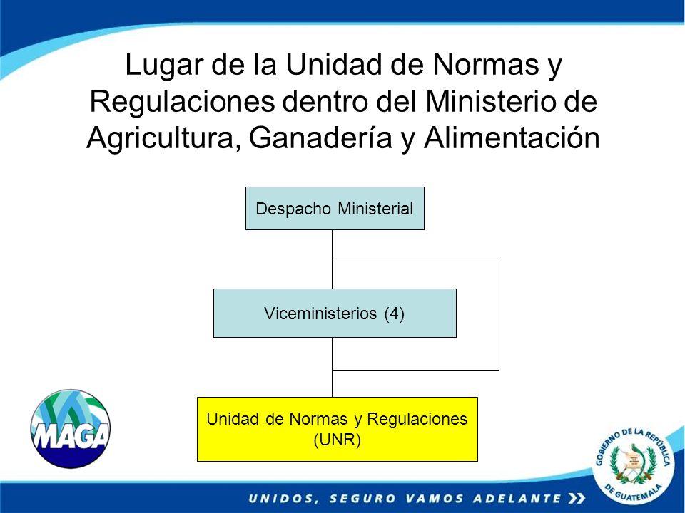 Unidad de Normas y Regulaciones