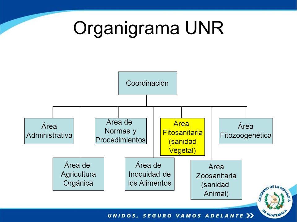 Organigrama UNR Coordinación Área Administrativa Área de Normas y