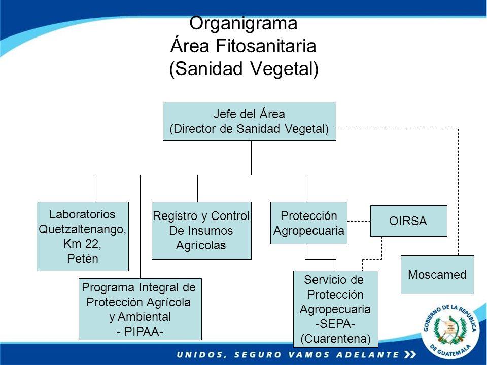 Organigrama Área Fitosanitaria (Sanidad Vegetal)