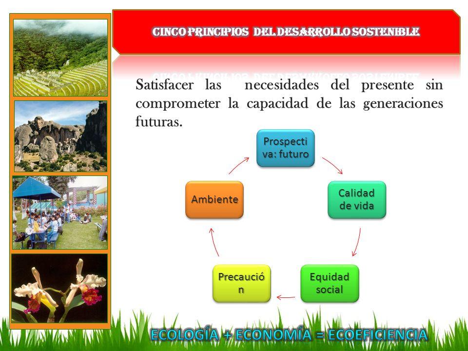 Ecología + Economía = Ecoeficiencia