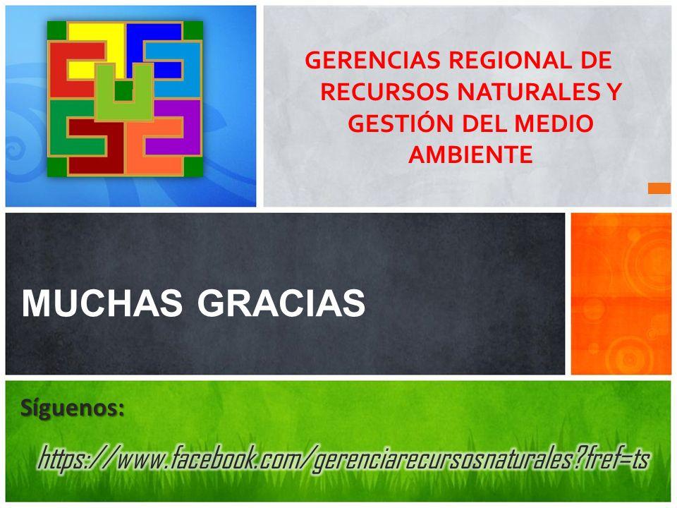 GERENCIAS REGIONAL DE RECURSOS NATURALES Y GESTIÓN DEL MEDIO AMBIENTE