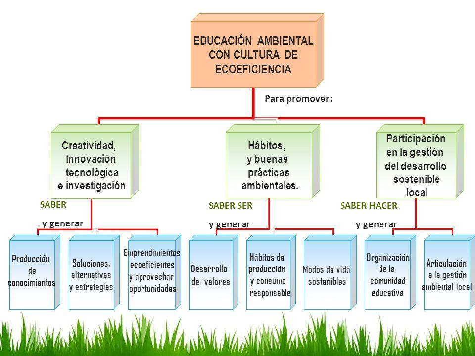 EDUCACIÓN AMBIENTAL CON CULTURA DE ECOEFICIENCIA
