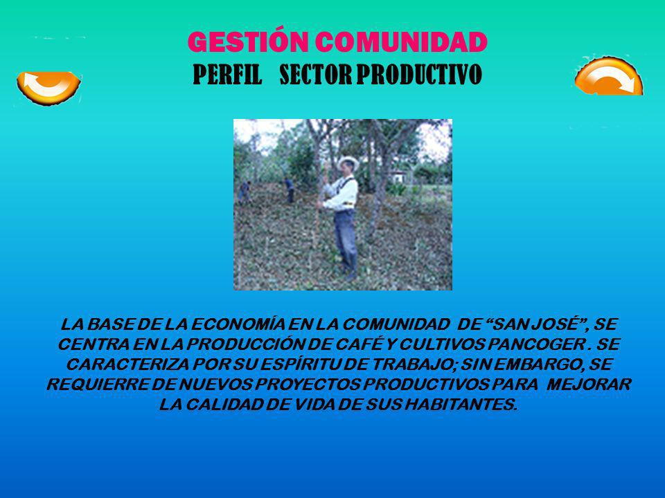 PERFIL SECTOR PRODUCTIVO