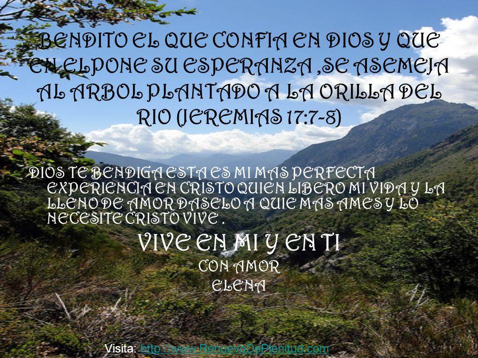 BENDITO EL QUE CONFIA EN DIOS Y QUE EN ELPONE SU ESPERANZA ,SE ASEMEJA AL ARBOL PLANTADO A LA ORILLA DEL RIO (JEREMIAS 17:7-8)