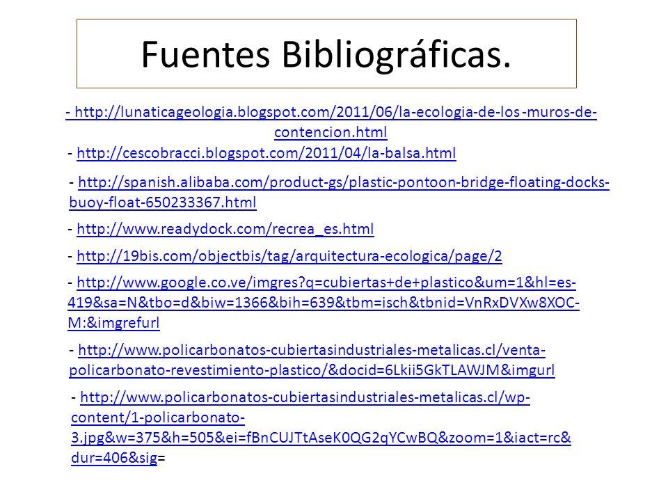 Fuentes Bibliográficas.